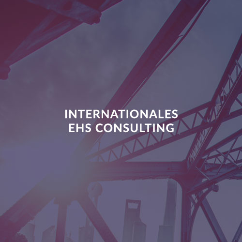 INTERNATIONALES EHS CONSULTING